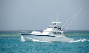 Mahi Mahi - Hatteras Sportfisherman 42ft