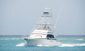 Sea-iesta - Bertram Sportfisherman 54ft